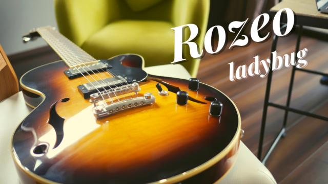 rozeo_guitar